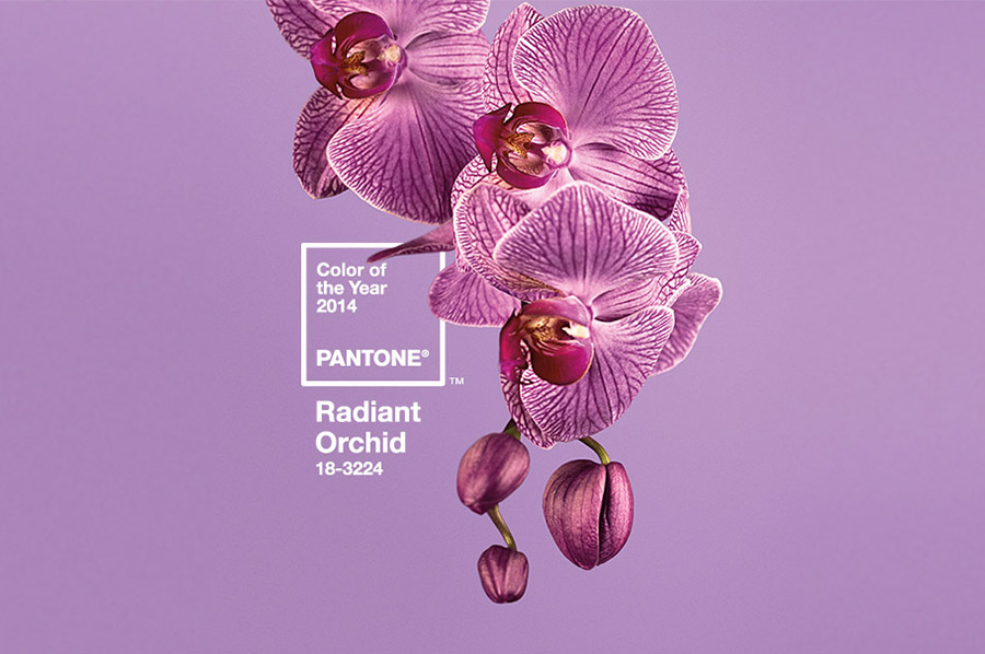 pantone_radiant_orchid_1